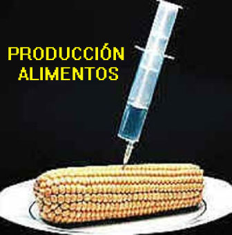 20100530110102-alimentos-transgenicos.jpg
