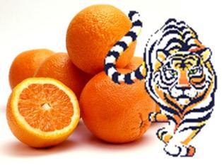 20120120220836-tigres-y-naranjas.jpg