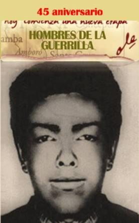 20120707000544-hombres-de-la-guerrilla.jpg