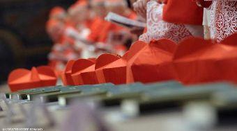 20150105220749-cardenales-conclave-lor-04012015.jpg