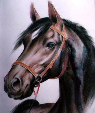20150810123851-cabeza-de-caballo-2.jpg