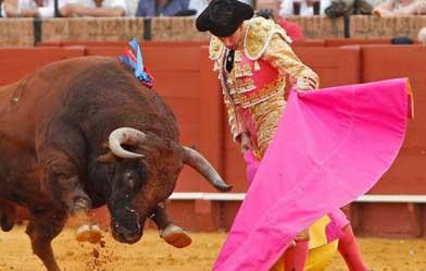 20150823140832-corridas-de-toros-mexico.jpg