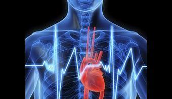 20161206112815-insuficiencia-cardiaca.jpg