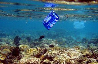 20170108024850-plastico-en-las-playas-chilenas.jpg