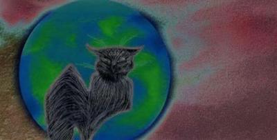 20090616092932-gato-solarizado-small-.jpg