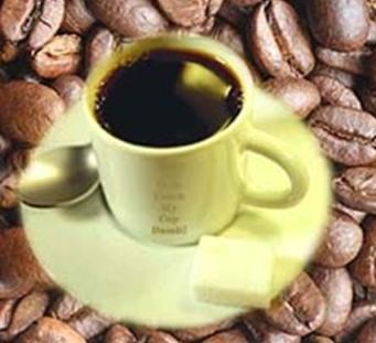 20091223014358-cafe.jpg