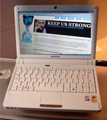 20101207133306-wiki.jpg