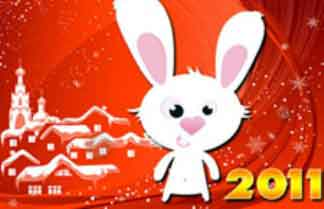 20110129091316-ano-del-conejo.jpg