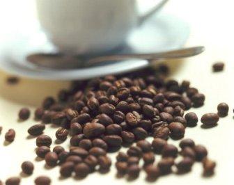 20110901205218-cafe.jpg