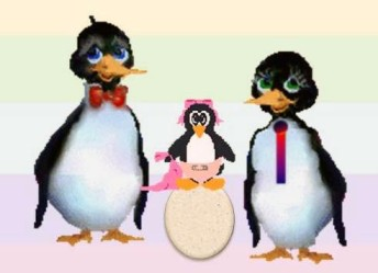 20120521034351-pinguinos-gay.jpg