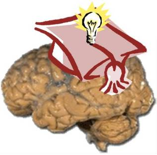 20120701001707-cerebro-recordar.jpg