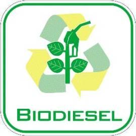 20120718130628-103powered-by-biodiesel11.jpg