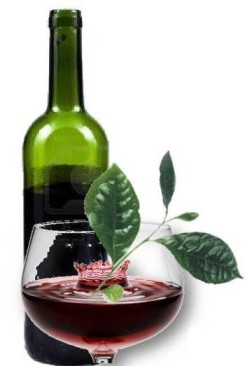 20130210105315-7.-vino-te-limon.jpg