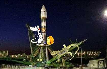 20130421114117-5-cohete-ruso-ratones-y-lagarto.jpg