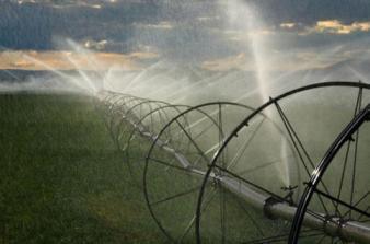20130506103103-como-ahorrar-agua.jpg