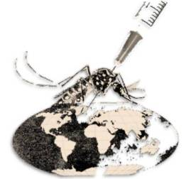 20130816143450-1.-vacuna-contra-dengue.jpg