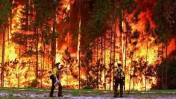 20140312061057-incendio-forestal.jpg