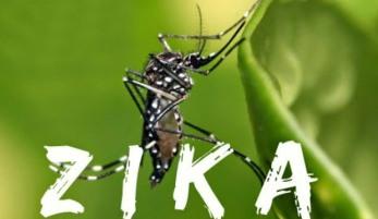 20160217123453-nuevo-virus-zika-1.jpg