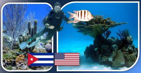 20170521021128-expedicion-cientifica-cuba-ee.uu.-estudia-arrecifes-de-coral.jpg
