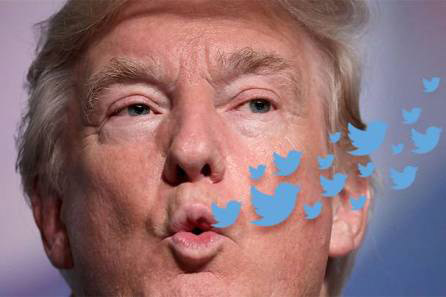 20171020022332-donald-trump-twitter-birds-620x412.jpg