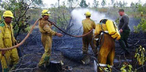 20180309004152-gran-incendio-en-bosques-de-pinar-del-rio.jpg