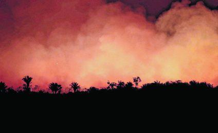 20190823161423-amazonas-el-pulmon-verde-que-arde.jpg