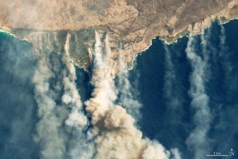 20200219122459-incendios-co2-mundialmente.jpg