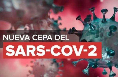 20201223004730-lateclaconcafe-nueva-cepa-coronavirus.jpg